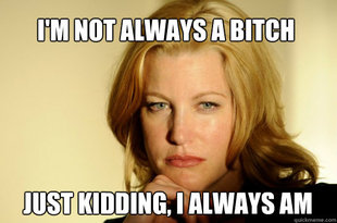 Skyler White bitch